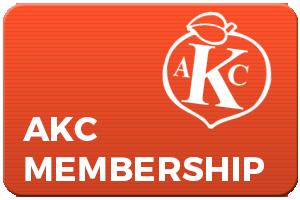 AKC Memebership